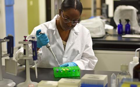 Biomedical Engineering student