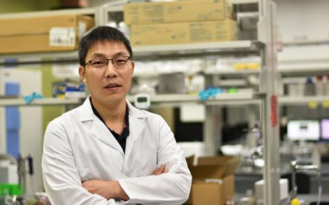 UNT faculty Don Zhu