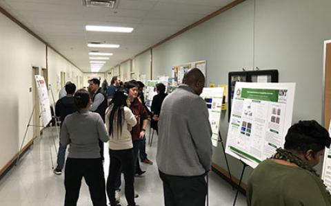 Students present posters to fellow students, their faculty, and judges in a hallway.