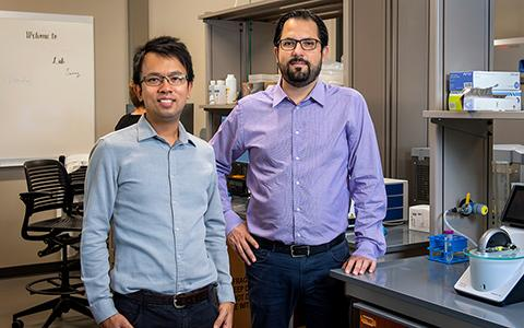 Clement Chan and Faruck Morcos stand in the UNT lab