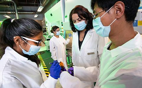 Anupama Kaul works in her lab with students